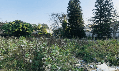 Land For Sale in Dehradun
